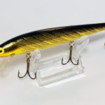 REBEL/MINNOW F20